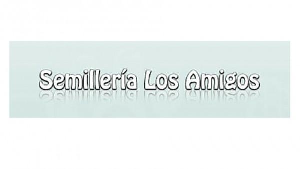 SEMILLERIA LOS AMIGOS